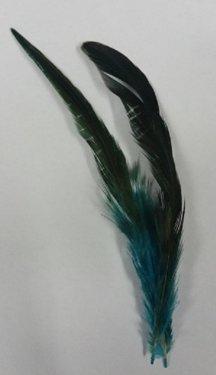 Hoeden vogel veer decoratie voor de hoed